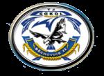 TJ Sokol Běchovice II, logo